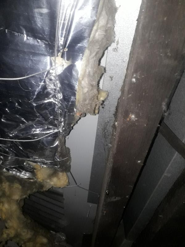 Slightly damp insulation