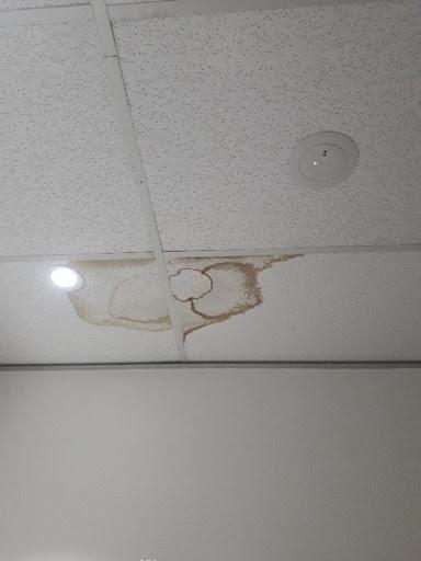Ceiling tiles wet