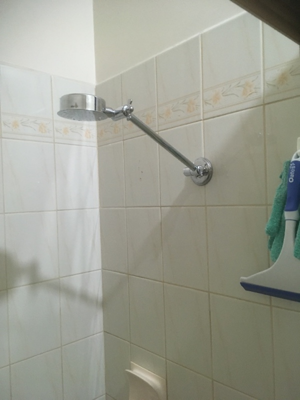 Residential Plumbing, Brighton, New shower head
