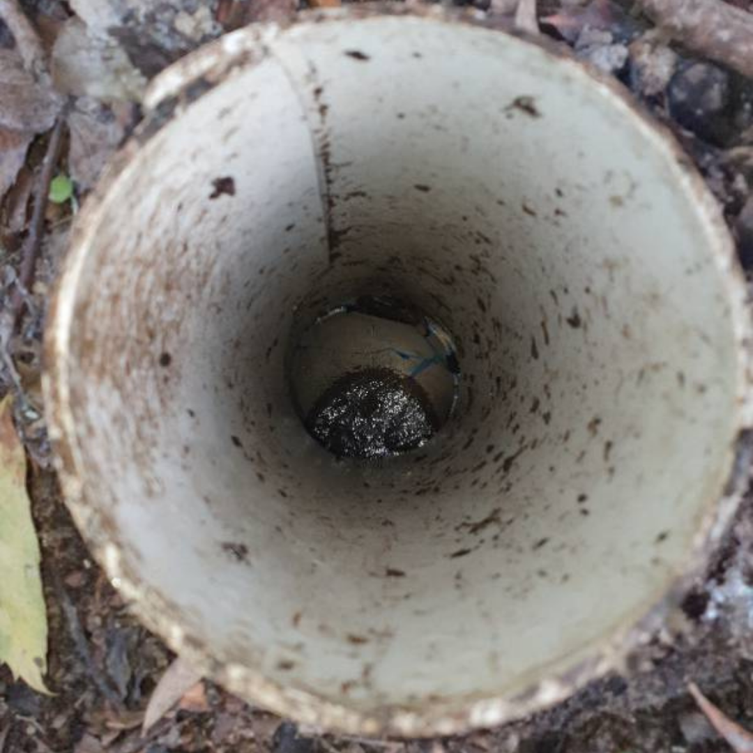 Residential Plumbing, Balwyn, Sewer drain unblocked