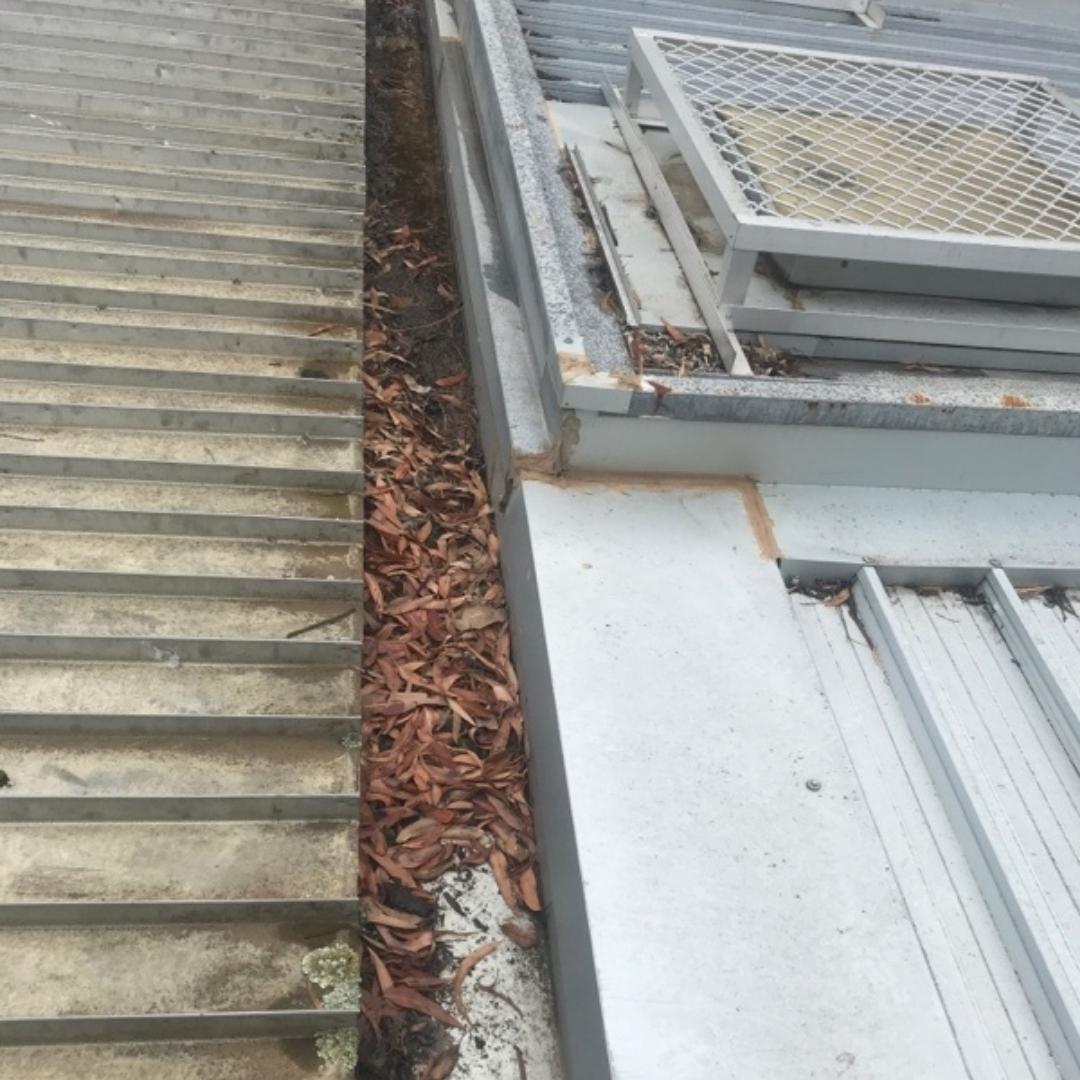 Plumber Melbourne, Ivanhoe, Leaves in Box Gutter