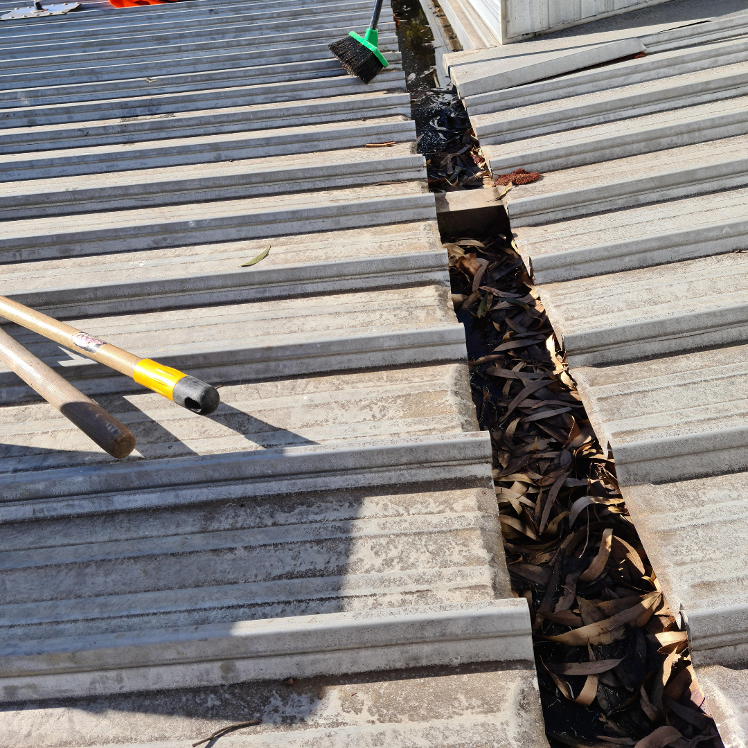 Plumber Melbourne, South Yarra, Gutter Before Clean