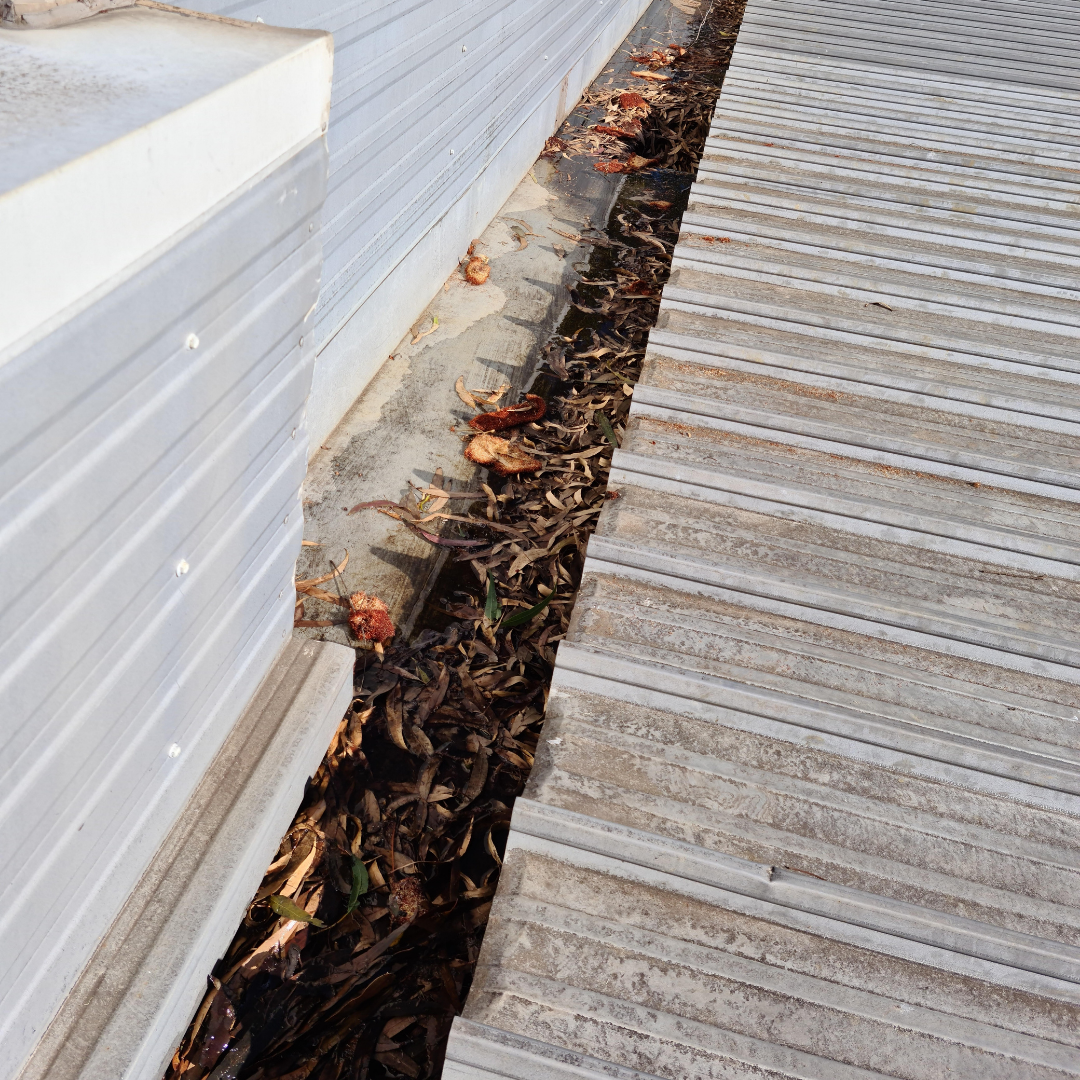 Plumber Melbourne, South Yarra, Gutter Before Clean 2