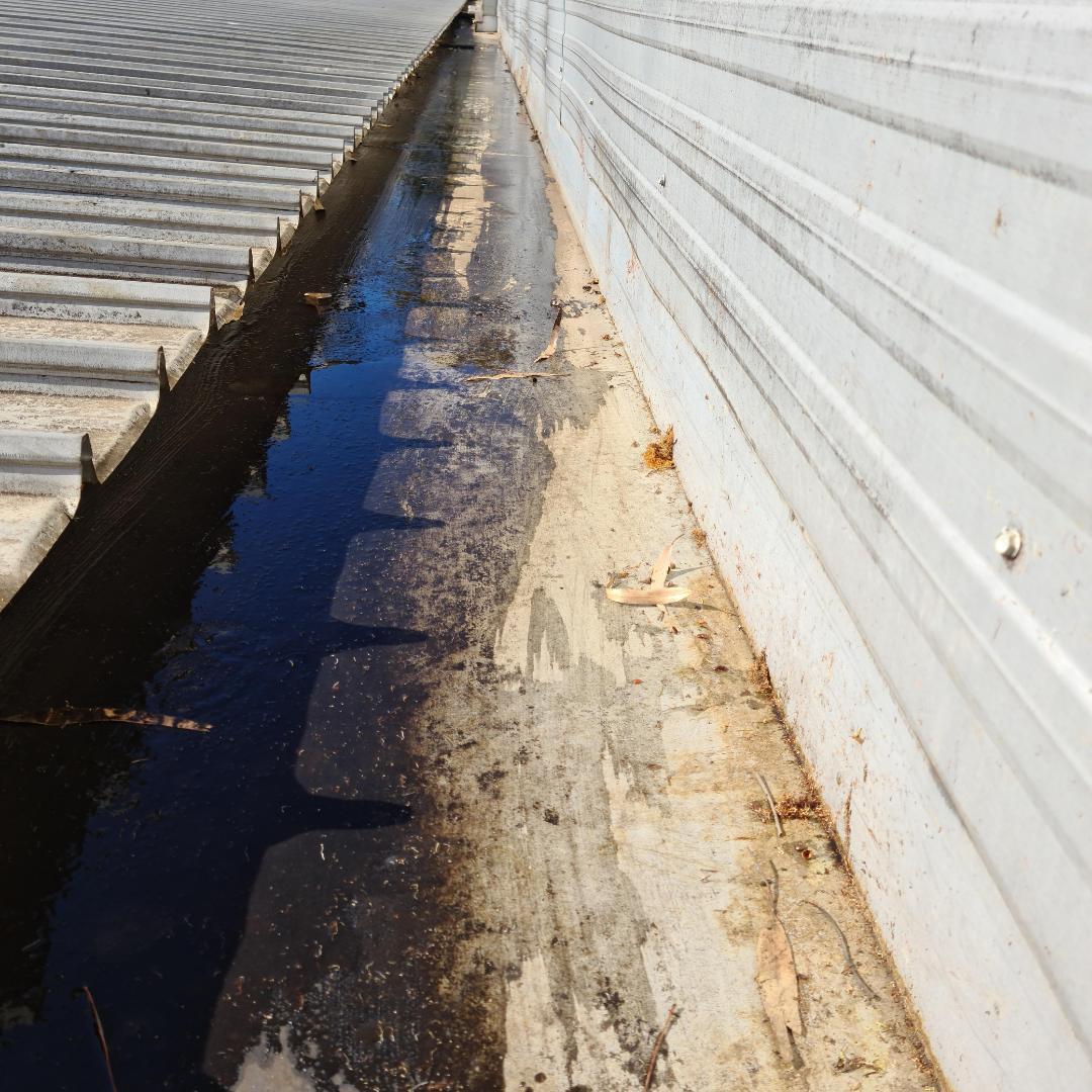 Plumber Melbourne, South Yarra, Gutter After Clean 2